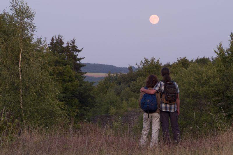 Zwei Wanderer im Mondschein