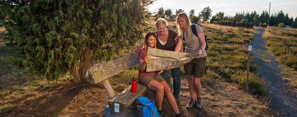 Wanderer studieren die Karte