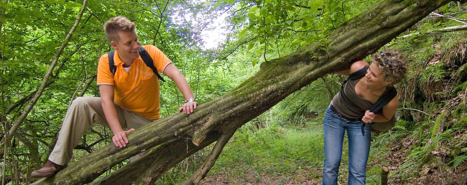 Wanderer klettern über einen umgefallenen Baum