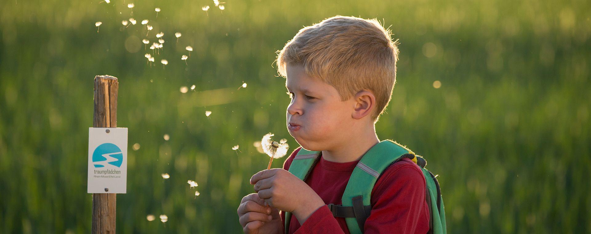 Junge pustet eine Pusteblume