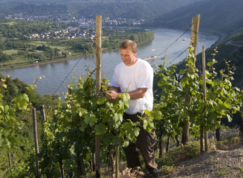 Wandern auf den Traumpfaden im Kreis Mayen-Koblenz